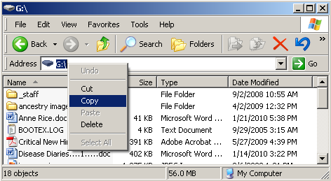 Files on Flash Drive
