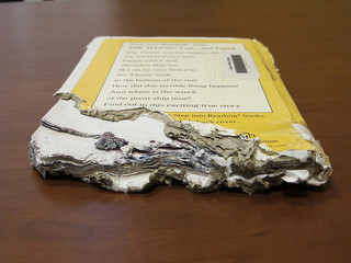 Chewed book
